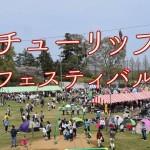 【4月11日・12日】チューリップフェスティバル