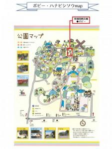 【果樹園横】ポピー・ハナビシソウmap