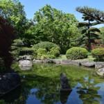 【日本庭園】新緑の季節です♬