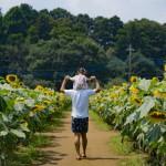 2019夏写真コンテスト応募作品 (16)