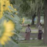 2019夏写真コンテスト応募作品 (7)