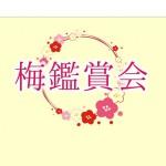 【2/6(土)~3/7(日)】梅鑑賞会『梅園ガイドツアー』開催します※終了いたしました