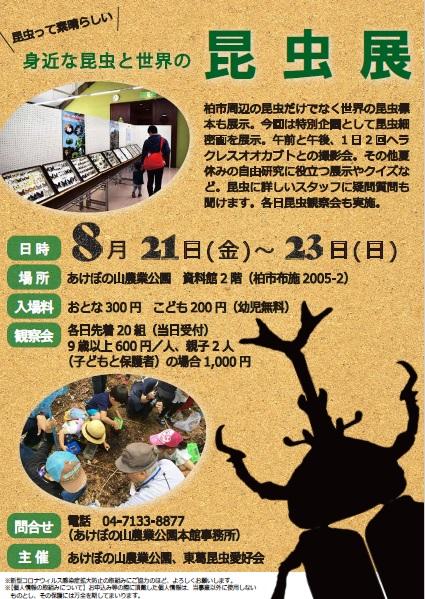 200802昆虫展ポスター