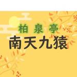 【11/13】南天九猿作り 開催