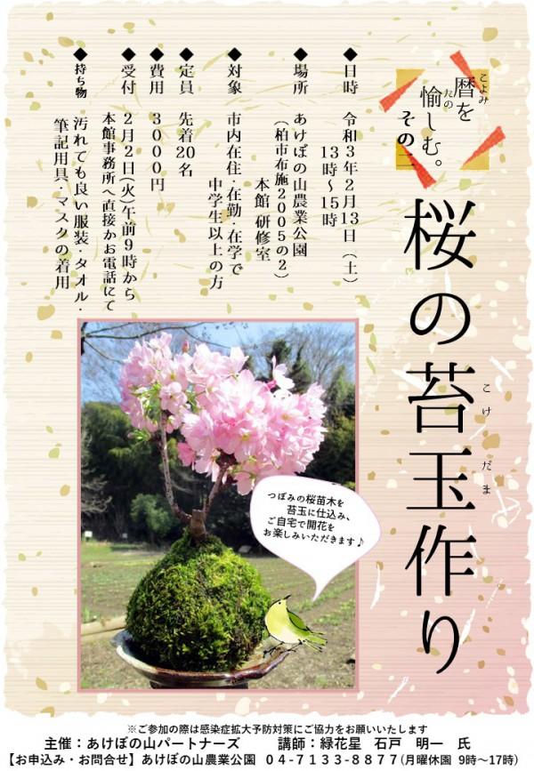 桜の苔玉作りポスター