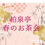 【4/10】柏泉亭 春のお茶会